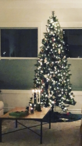 Picture of a tall, slender, lit Christmas tree in a living room
