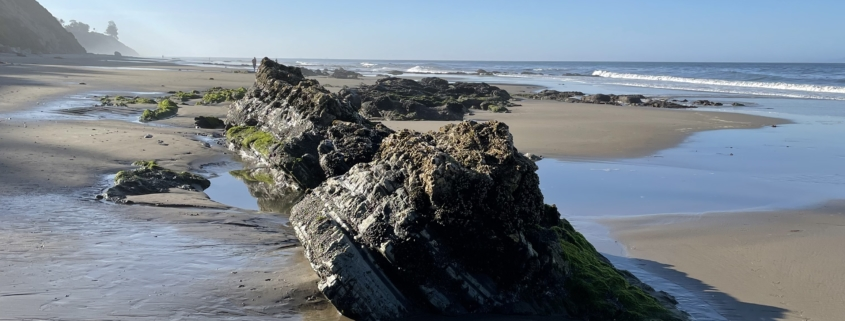 sandy beach with large rocks and a sunny blue sky